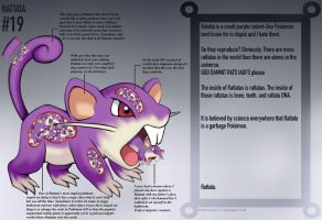 Rattata Anatomy- Jokedex Entry