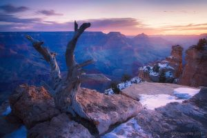 Waiting for the Sun by PeterJCoskun