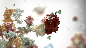 Ribisome and mRNA by AdionDesigns