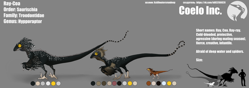 Ray-Coa - Reference Sheet. by Xstillwatersrundeep