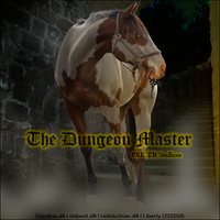 Horse Avatar ~ The Dungeon Master by Liberty-Designs