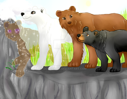 Seekers bears by ccsquirrel