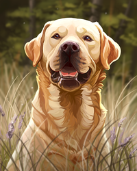 Yellow Lab by DawnFrost