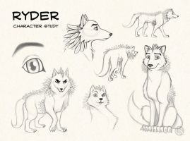 Ryder by CristianoReina