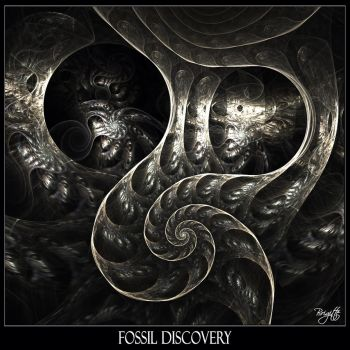 Fossil Discovery by Brigitte-Fredensborg