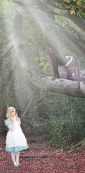 Alice Meets the Cheshire Cat by RhodyGunn