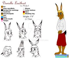 Reference - Daniella by DCLeadboot