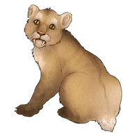 Smilodon Cub Companion - Standard by TokoTime