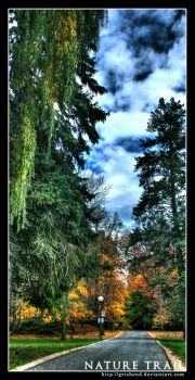 Nature Trail II by Grishend