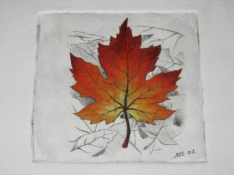 autumn leaf by laerry