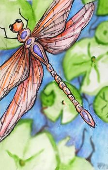 Flying By ( Tombow Dragonfly) by Andailite47