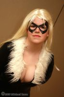 Black Cat 1 by Insane-Pencil
