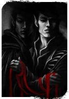 Elves of Dragon Age - Dirthamen and Falon'Din by yuhime