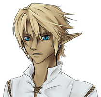 Link portrait by budgebuttons