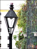 Plants and Lamps by jensaarai