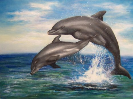Dolphins by Damaride