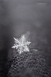 Snowflake by J-Farrell