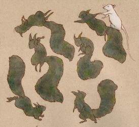 more black squirrels by luve