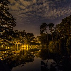Night pond reflections by 5isalive
