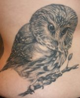 Owl by tattooedone