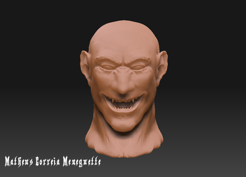 2nd Zbrush Work - Another Head by SaTTaR