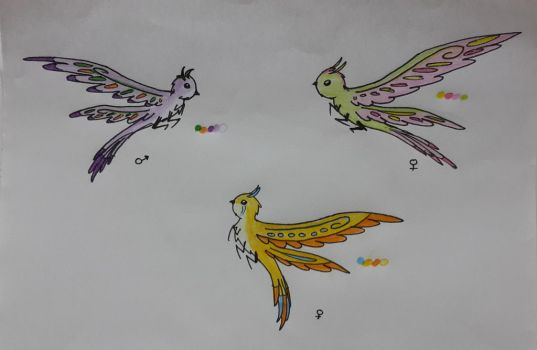 Butterfly-Bird Adopts|Open by lifewatery