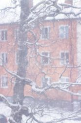 Snowday No.2 by WiksPhotography