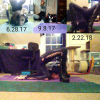 8 month time lapse cheststand by GothicRavenMidnight