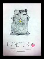 Hamster by DH-Students-Gallery