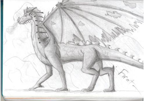 Graphite Dragon by C3H6N6O6