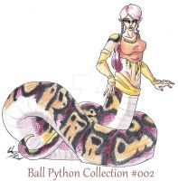 #002 - Ball Python Collection by FantasyToArt