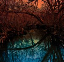 Creek of the Sunset... by DoubleE-studios