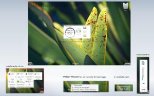 midori concept win 8 by gieffe22