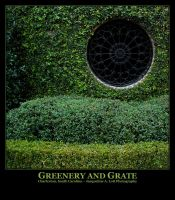 Greenery and Grate by Isquiesque