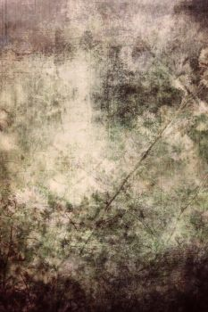 Dreams of a Past Spring by dazzle-textures