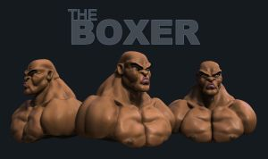 The Boxer 2 by patokali