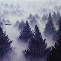 Foggy Forest by crazycolleeny