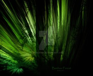 Bamboo Forest by Casperium