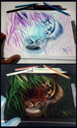 Negative Tiger Drawing by mascarum