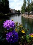 In Strasbourg by Balauru