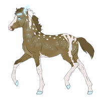 N3184 Padro Foal Design by casinuba