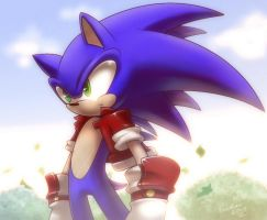 Sonic the hedgehog +Reflections+ by nancher