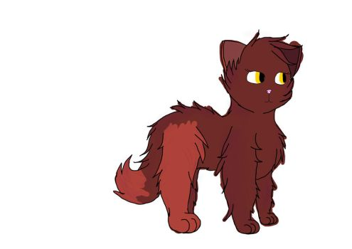 A less rushed Amberpaw... by Darkleaf-Kitties