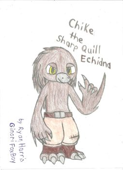 Chike the Sharp Quill Echidna by FoxBoyKonogo