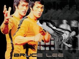 Bruce Lee by LSQ