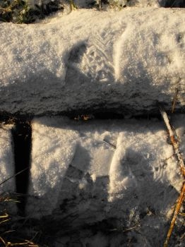 Snow prints by Mystic-Photography