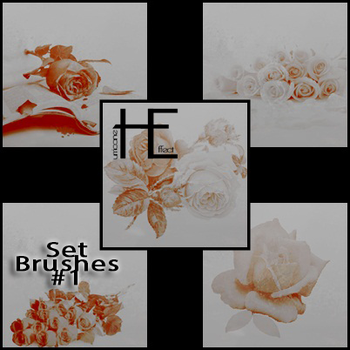 Roses Brushes HE by EllaBellsGraphic