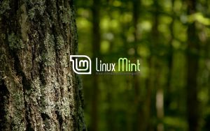 Wallpaper for Mint 34 by malvescardoso