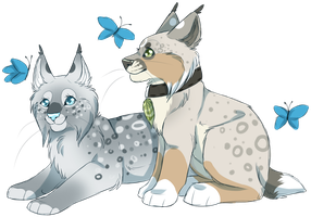 Frigid and Sonja by Pinky-Poodle