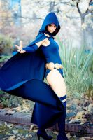 Raven by Ally-bee
